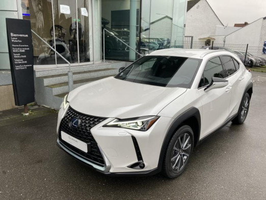 Used LEXUS UX Electric Executive Line 2021 WHITE € 54,900 in Wavre